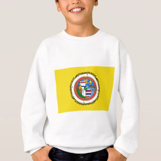 Sweatshirt Honolulu-drapeau