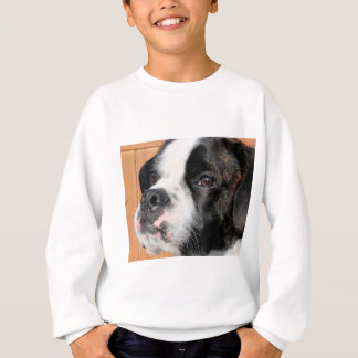 Sweatshirt Hybride Photo-10 de Jarno Boston Terrier