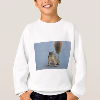 Sweatshirt IMG_3601a.JPG