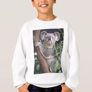 Sweatshirt Ours de koala