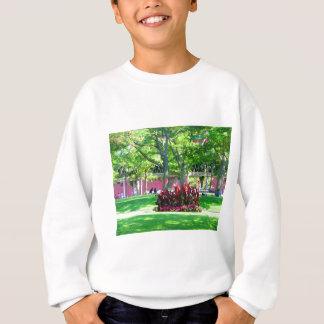 Sweatshirt Photographie verte de nature de Boston Etats-Unis