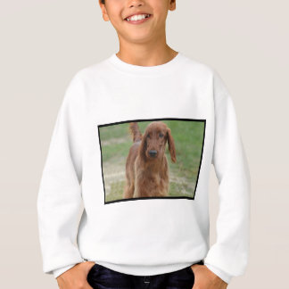 Sweatshirt Poseur irlandais adorable