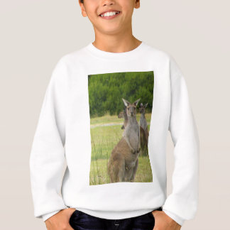 Sweatshirt Pré de kangourou