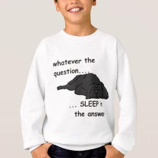 Sweatshirt quoi que la question…