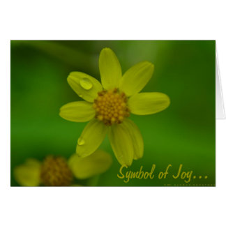 Symbool van Vreugde… Kaart