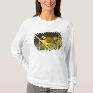 T-shirt Adulte à capuchon de citrina de Wilsonia de