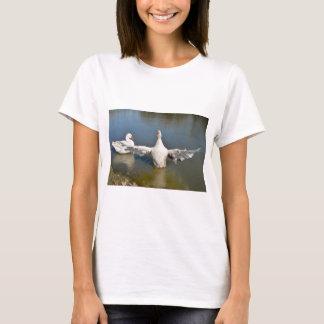 T-shirt Ailes blanches d'oies ouvertes