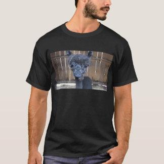 T-shirt Alpaga rasé triste