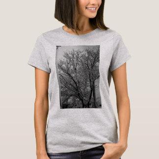 T-shirt Arbre congelé