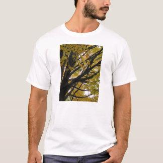 T-shirt Arbre d'érable