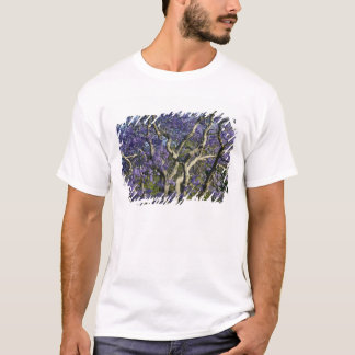 T-shirt Arbres de floraison de Jacaranda en nouveau parc