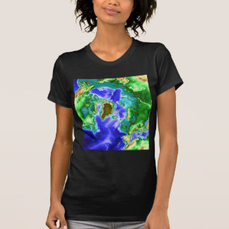 T-shirt Arctique