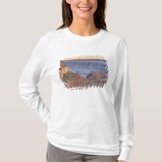 T-shirt AZ, Arizona, parc national de canyon grand, sud 2