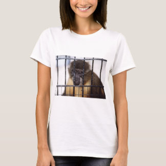 T-shirt baboon.jpg
