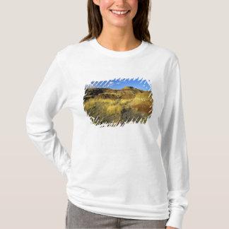 T-shirt Bad-lands au parc provincial de dinosaure dans