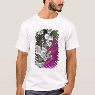 T-shirt Bassin de l'Amérique du Sud, Brésil, Amazone. Plan