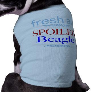 T-shirt beagle corrompu