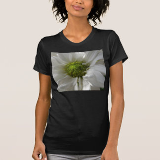 T-shirt blanc de dames de chrysanthème