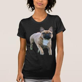 T-shirt Bouledogue Shirt français