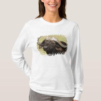 T-shirt Buffalo africain, caffer de Syncerus, se tenant