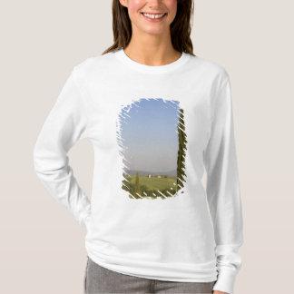 T-shirt Campagne près de Pienza. d'Orcia de Val, Sienne