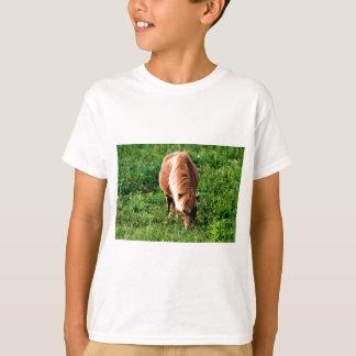 T-shirt Champ de bonheur