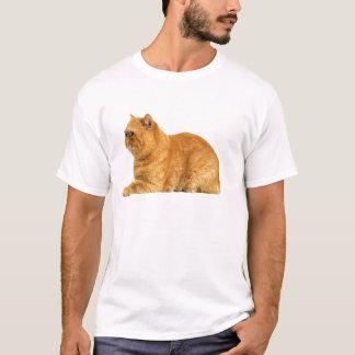 T-shirt Chat persan
