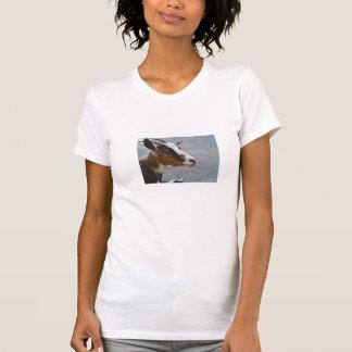 T-shirt Chèvre brune mignonne