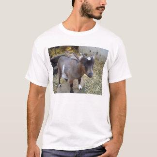 T-shirt chèvre de billy