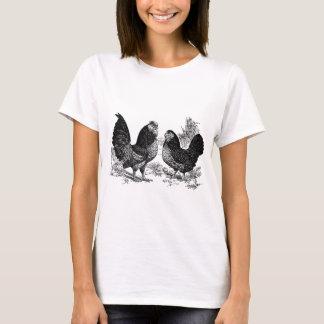 T-shirt club d'Anver de d