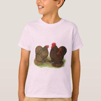 T-shirt Cochins :  D'or-lacé