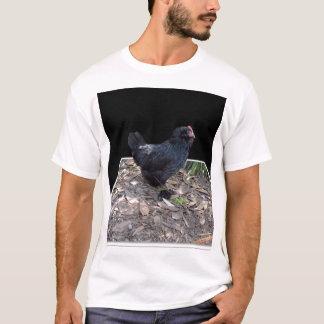 T-shirt Coq pelucheux noir,