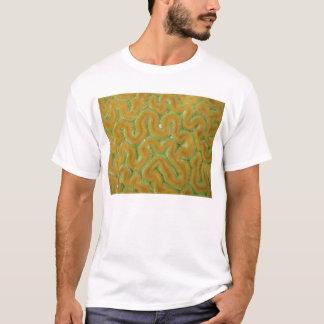 T-shirt Corail de cerveau