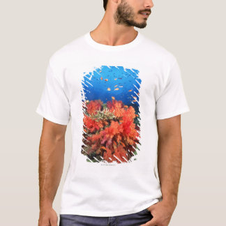 T-shirt Corail et poissons