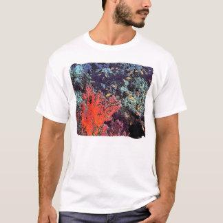 T-shirt Corail rouge avec les poissons oranges