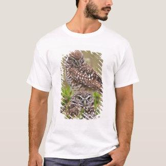 T-shirt Creusant le hibou, cunicularia d'Athene, corail de