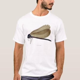 T-shirt damselfly Noir-à ailes