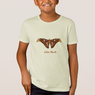 T-shirt de mite d'atlas