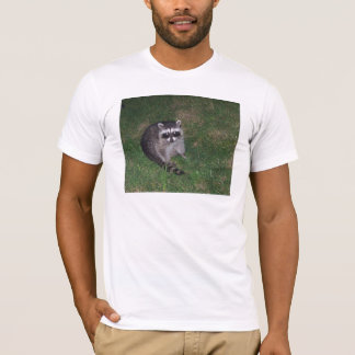 T-shirt de raton laveur