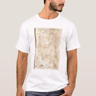 T-shirt De Stratford à Poughkeepsie 18