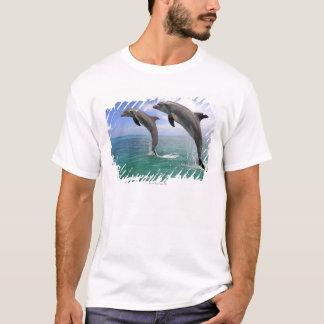 T-shirt Delfin