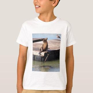 T-shirt d'enfants d'otarie de la jetée 39 de San