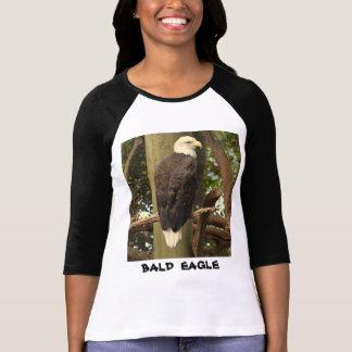 T-shirt Eagle chauve