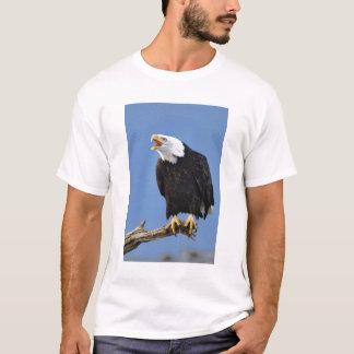 T-shirt Eagle chauve appelant, Homer, Alaska, Haliaetus