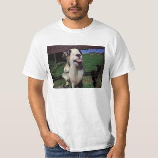 T-shirt effronté de chèvre