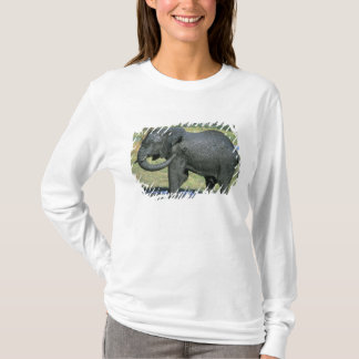 T-shirt Éléphant africain, (africana de Loxodonta), boue
