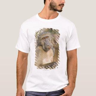 T-shirt Éraflure de babouin de Chacma (ursinus de Papio)