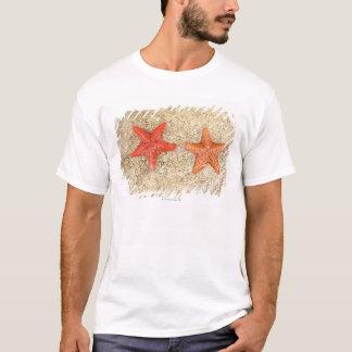 T-shirt étoiles de mer sur la plage, au bord de l'océan
