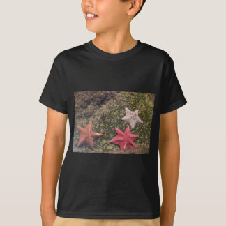 T-shirt Étoiles de mer vivantes (4).JPG
