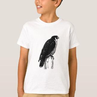 T-shirt Faucon pérégrin (illustration)